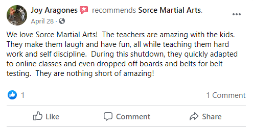 Testimonial For Home Page 2, Sorce Martial Arts in South Milwaukee